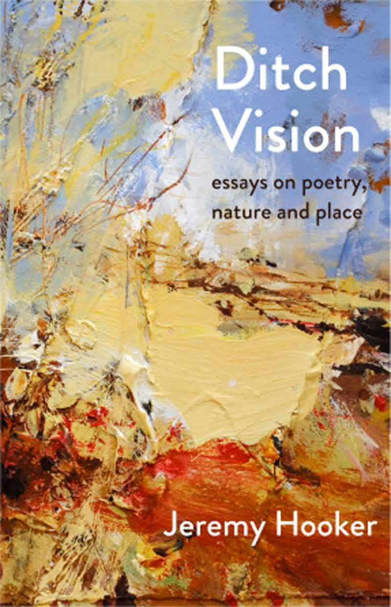 Ditch Vision: Essays on Poetry, Nature and Place By Jeremy Hooker