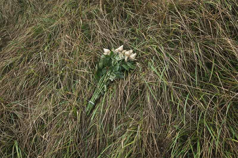 Roses left at the top of the cliff. Brian David Stevens, 'Beachy Head'.